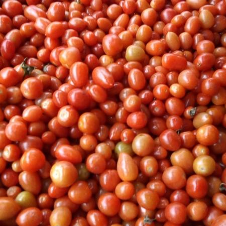 Tomate Cherry rojo x kg