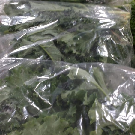 Lechuga Kale Hidropónica x 2