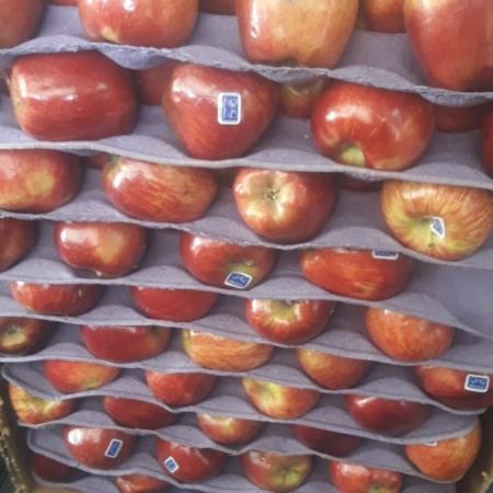 Manzana Moño Azul roja  x kg SUPERIOR