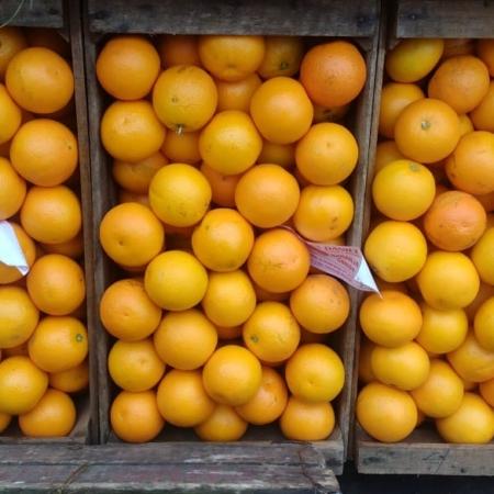 Naranja para Jugo X KG – Consultar x Cajón