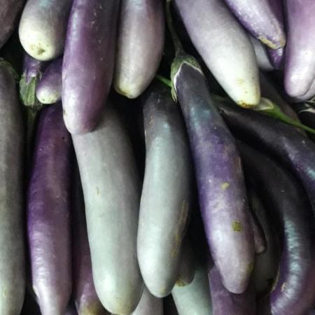 Berenjena violeta fina x kg