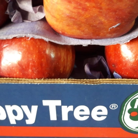 Manzana Deliciosa x kg – HAPPY TREE