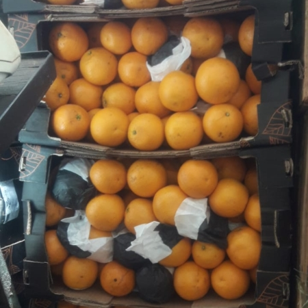 "Naranja de CORRIENTES ""nueva p/ jugo""x kg"